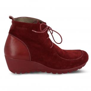 Botines de cordones con cuña de la marca Wonders nueva colección zapatos